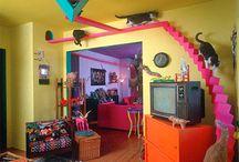 Cool Cat Houses