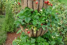 ogród / ciekawe rozwiązania małej architektury ogrodowej