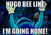 Hugo the Hornet / by Charlotte Hornets