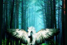 My beauties,my loves!  my horsies.