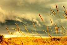 ♧ Nature ♧ / Nature / sky / sun / summer / beach / sunset / sunrise / night / clouds / ocean / water / amazing / wave / by Emad Sayed