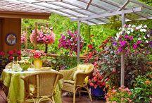 Little Garden / Simple gardening ideas
