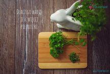 Zioła i przyprawy / zioła i przyprawy