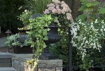 ideas para tu jardin.