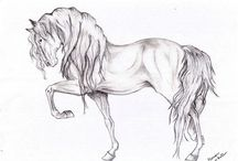 Awesome Horse Drawing