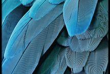 Farver og mønstre