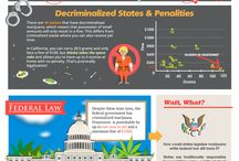 The State of Marijuana