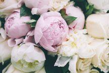 { wedding florals }