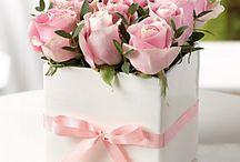 rózsa-box
