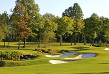 Golf / by UMMC