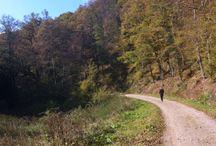 Hike / Spa b