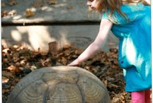 I may be slow _Tortoise / by Whitney Barnhart