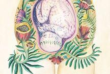 Munay ki - the Rite of the Womb