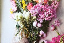 Flowers i like / Flowers i like