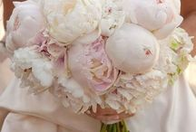 I fiori / I fiori raccontano il vostro matrimonio