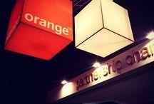 Orange spotted