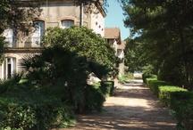 Properties in Pézenas / Luxury Properties in Languedoc