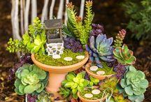 Mini-tuinen