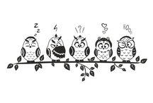 owls / Owls Design SVG, DXF, EPS, Png, Cdr, Ai, Pdf Vector Art, Clipart instant download Digital Cut Files
