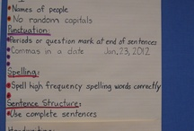 Anchor Charts / by Tracy Winkler
