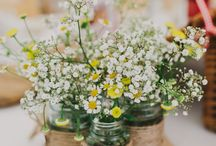 Daisy Arrangements