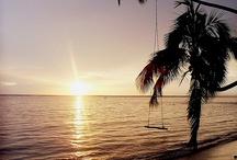 Fiji / by Janet Fabiano