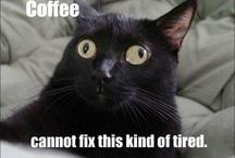 Food | Drinks | Coffee...NOW! / by Kirstin Douglas