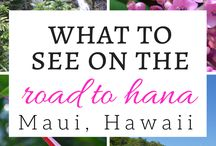 Travel Bucket List - Maui / What is on your travel bucket list? This board is a collection of pins on what to do, where to stay, what to eat, places to see on the Island of Maui, Hawaii.