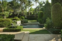 Tropical Feel / Tropical Gardens