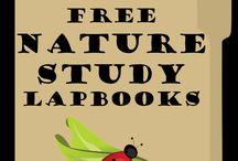 Nature study's