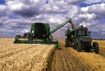 Agricultural / Articles, information and discussion on Agricultural/farming. For those who take interest in these areas