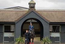 Farley Farm Equestrian Centre #stablesforbusiness