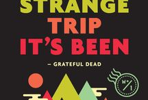What a long strange trip its been / by Amy Wergin