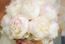 Bouquets & Buttonholes