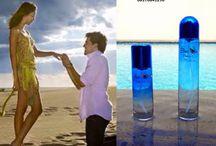 Parfum Cinta Blue Swan / 0817841296 (XL), parfum pria original, parfum cinta original, parfum cinta blue swan, parfum wanita terlaris, parfum wanita terbaik, parfum wanita favorit, parfum wanita terbaik, parfum wanita paling wang,i parfum wanita tahan lama, parfum wanita murah, parfum wanita yang wanginya enak dan tahan lama,