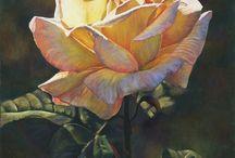 Lauren Knode pastel