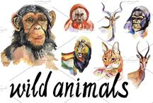 wild watercolor animals