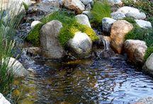 Pihalampi, vesiaihe pihalla / Vesiaihe pihalle ja puutarhaan. Pihalammet, vesilähteet jne.