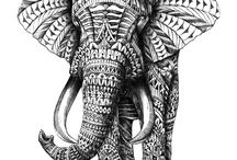 It´s all about elephants