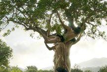 corpi e natura