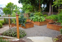 Edible Landscapes / Vegetable and Edible Ideas