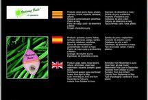 Verdcamp Fruits SAT 1132 CAT / Cooperativa d'Hortícoles de Cambrils