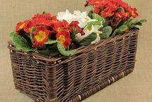Wiklina - ogród / Kwietniki, osłonki, doniczki wykonane z wikliny