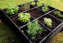 # Garden #