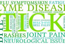 Lyme Disease Guides / Each week we post an article on our blog that tackles anything and everything lyme disease related.