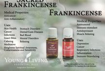 Essential Oils / Young Living oils...to help your body naturally... / by Annie Parker-Catalano