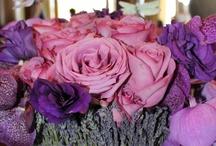 wedding / by Jessa Murphy