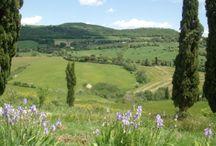 Toscana, Itália / Lugar que eu amo!