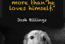Be Inspired by Your Dog / Our favorite friend teaches us lessons every day. www.pawtreasures.com