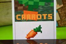 Minecraft / by Kenzi Zenor